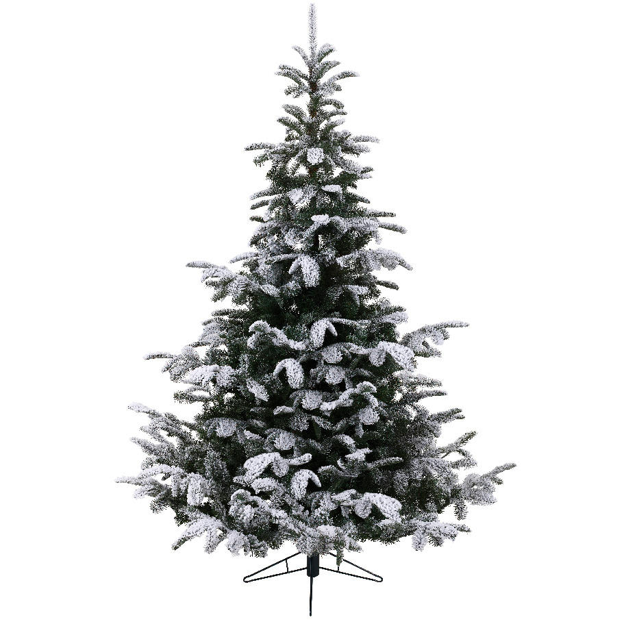 Everlands Nordmann Fir Snowy 210
