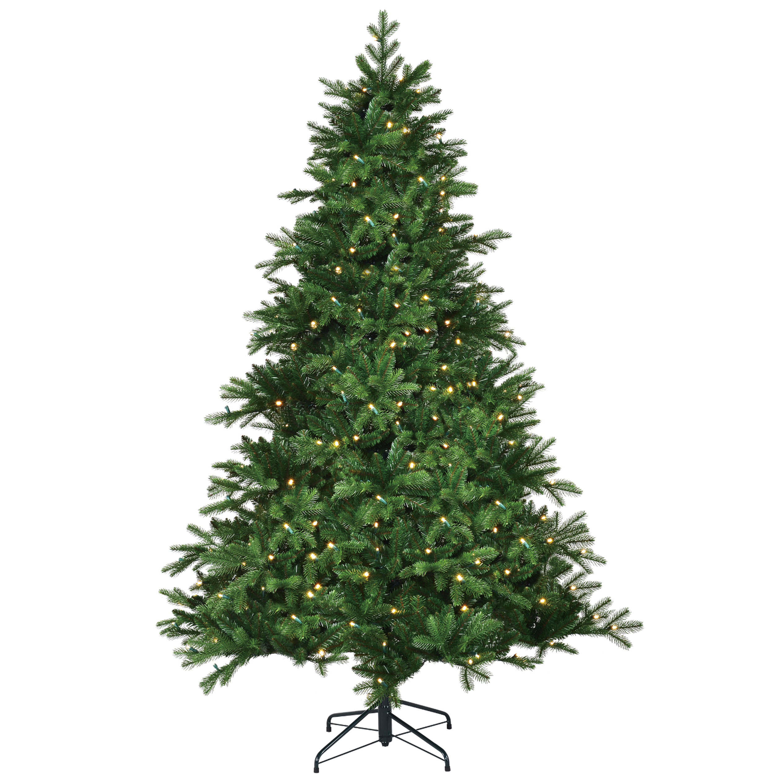 Black Box Trees Led Brampton Spruce 215
