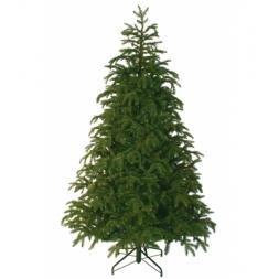 Kerstboom Black Box Trees Frasier Fir Green Slim 215 Shake2S