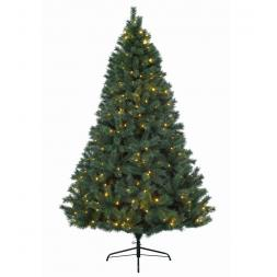 Everlands Led Canada Spruce 210