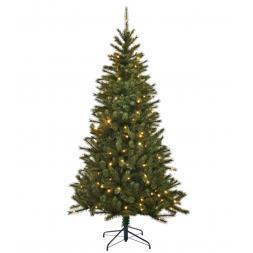 Black Box Trees Led Kingston Pine Slim 230