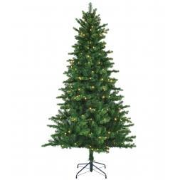 Black Box Trees Led Milton Spruce 230