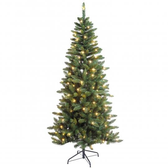 Black Box Trees Led Danfield Fir Green 155