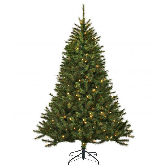 Black Box Trees Led Kingston Pine 230