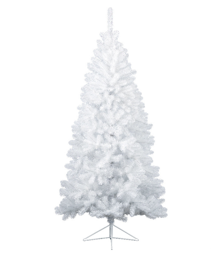 Everlands White Spruce 180